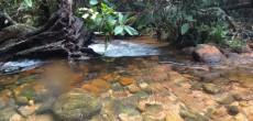 Banho de rio no Vale do Rio Claro