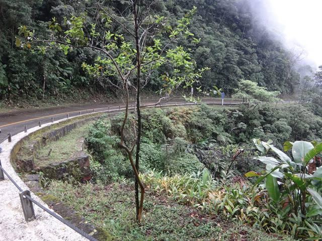 Um dos raros momentos sem chuva na Estrada Velha de Santos.