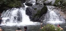 Trilha da Cachoeira do Rio Ouro Fino