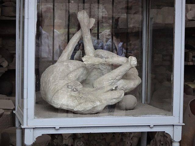 Pompeia: corpo de um cachorro petrificado