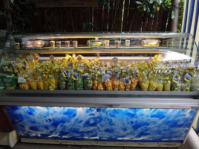 Sorrento: loja do Giardini di Cataldo