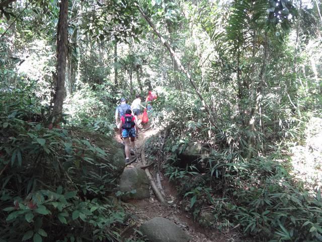 Ubatuba - Trilha da Cachoeira Véu da Noiva