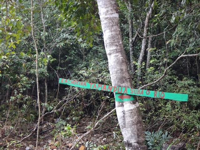 Placa indicando para seguir pelo rio.