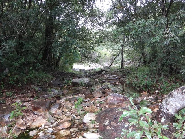 Nesse ponto, o leito do rio ficou cheio de pedras, e não estava claro por onde seguir.