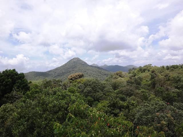 Ao fundo, os picos de Monte Verde/MG.